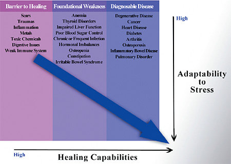 healing capabilities - Copyright – Stock Photo / Register Mark