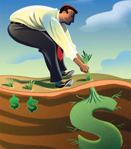 cash crop - Copyright – Stock Photo / Register Mark
